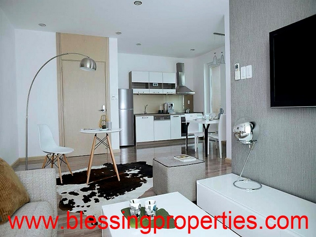 Brand New Furnished Apartment For Lease in Thao Dien Area